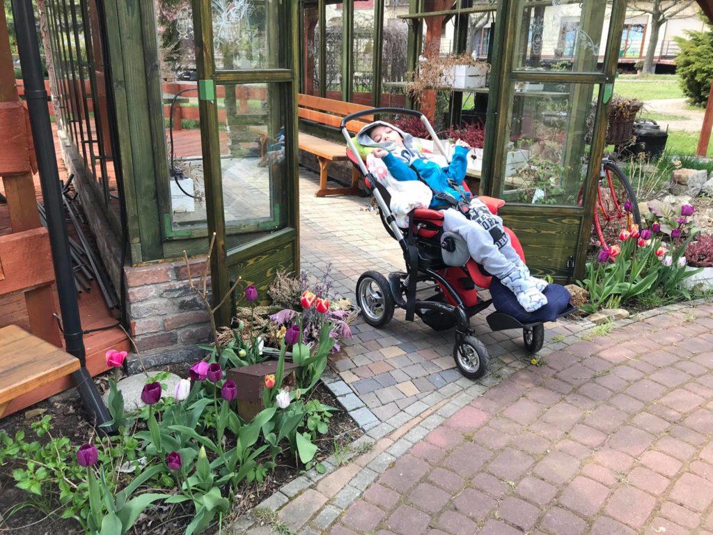 Wiosenne spacery w ogrodzie Hospicjum